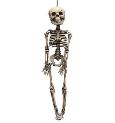 Skelet Voor Halloween.Halloween Skelet 30cm